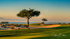 Sunset at Monterey (Jeffrey Balfus (thx for 5,000,000 views)) Tags: mpcc golf californiacoast monterey sonyalpha fullframe sonyfe282470gm sel2470f28gm thegalaxy pinnaclephotography coth coth5 sonyilce6300 sony6300 mirrorless sonyemount lightroom flickrsbest overtheexcellence w100f