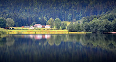 French Trees (jamiegaquinn) Tags: lake gerardmer france trees reflection reflections summer retournemer lacderetournemer