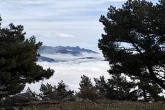 L1005058 (Sonsoles Huidobro) Tags: leicam10 elmarit24 landscape nieblas fog