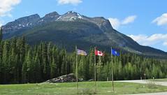 Kootenay National Park (Jasperdo) Tags: kootenaynationalpark banffnationalpark nationalpark parkscanada canada britishcolumbia canadianrockies alberta landscape scenery vermilionpass