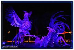 MONUMENTO A LAS PELEAS DE GALLOS. MONUMENT TO THE FIGHT COCKS. SAMBORONDÓN  ECUADOR. (ALBERTO CERVANTES PHOTOGRAPHY) Tags: fightcock gamecock fightingcock cock fighting fight monumento monument malecondesamborondón malecon samborondón guayas guayaquil guayaquilecuador gye ecuadorgye ecuadorguayaquil republicadelecuador colorlight colornight nightscape indoor outdoor blur retrato portrait streetphotography photoart photoborder photography luz light color colores colors brightcolors brillo bright animal night bird