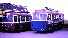 Slide 124-81 (Steve Guess) Tags: trolleybus museum sandtoft lincolnshire england gb uk bus cardiff liege 425 kbo961 fabrique nationale p1425