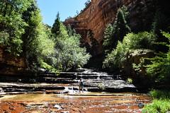 Utah_2018_ (63 of 144) (jasinrodriguez) Tags: zion trekking family narrows subway zionnationalpark nationalparks outdoors
