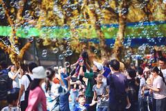 我飛~ (M.K. Design) Tags: taiwan puli family travel play bubble bokeh nikon portrait d800e baby girl children park life 台灣 埔里 魔幻泡泡 遊戲 兒童 寫真 人像 尼康 自然 泡泡 生活 家庭 親子 淺景深 散景 壓縮感 空氣感 立體感