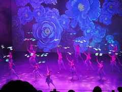DSC00468 (C.K.H.) Tags: china beijing acrobats