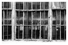 groovy decay (Francis Mansell) Tags: window glass dirt brooklyn industrycity newyork monochrome niksilverefexpro2 blackwhite pane factory industrial reflection