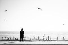 Lisbon, December 21, 2018 (Ulf Bodin) Tags: man urban lisbon lisboa people canonrf50mmf12lusm streetphotography outdoor lissabon canoneosr portugal urbanlife pt sky ocean river water monochrome