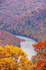 MCZ_2175 (markczerner) Tags: landscape outdoors fall colors fallcolors autumn orange red trees nature river coopers rock coopersrock statepark park west virginia wv wva countryroads country roads cheatriver valley mountains forest