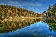 Paesaggio d'autunno (giannipiras555) Tags: lago dolomiti altoadige riflesso natura alberi acqua montagna panorama paesaggio landscape nikon autunno travel