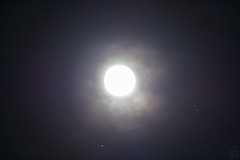 Moon vs. Aldebaran / @ 300 mm / 2018-11-23 (astrofreak81) Tags: full moon fullmoon vollmond mond luna aldebaran clouds wolken stars light night sky dark canon eos 1000d dresden 20181123 astrofreak81 sylviomüller sylvio müller