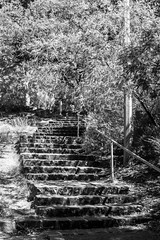 Steps (David Redfearn) Tags: steps bluestone basalt fairfield fairfieldpark blackandwhite blackandwhitephotography shadows shade summerlight canon6d canoneos6d canonef50mm stairway