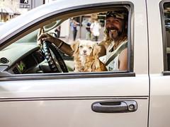 (el zopilote) Tags: 600 500 portland oregon people dogs pets animals cityscape architecture street wheels lumix gf1 milc m43 lumixg20mmf17asph