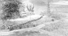 Fury (Loegan Magic) Tags: secondlife landscape blackandwhite monochrome trees path truck