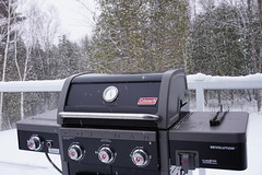 Never a Bad Time to BBQ (Toats Master) Tags: snow winter bbq trees