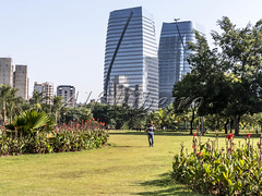 Alf Ribeiro 0267-92 (Alf Ribeiro) Tags: brazil brazilian city day flower parquedopovo people saopaulo skyline urban amazing architecture beautiful beauty buildings cityscape culture eco ecological ecology environment fun good grass green holiday landmark landscape leisure metropolis modern nature office outdoor panoramic park place plant preserve public scenic sport tourism tranquility travel trees walking