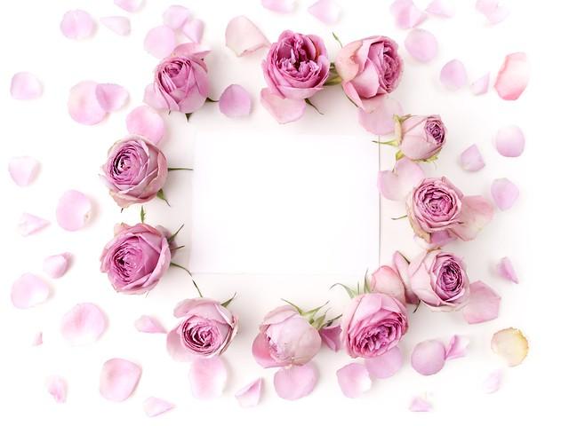 Обои розы, бутоны, pink, flowers, romantic, roses, valentine`s day картинки на рабочий стол, раздел цветы - скачать