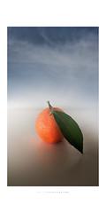 Inverno (Fiorenzo Delegà) Tags: orange mandarancio arancione foglia leaf nuvole clouds cielo sky exoticimage