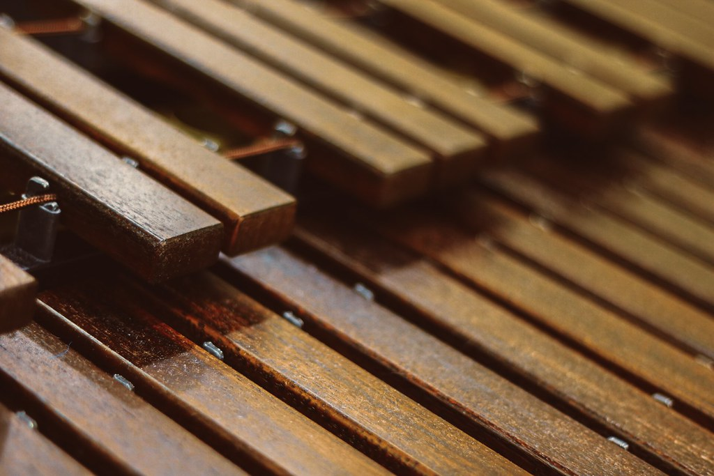 The World's most recently posted photos of xylophone
