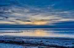 Winter Sunset (Martin Smith - Having the Time of my Life) Tags: wintersunset crescentbeach surreybc southsurrey calm ocean martinsmith ca rockybeach canada driftwood seaweed seabirds gulls