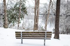 Echo Lake Park 1-14-2018 (adamwilliams4405) Tags: richmond rva richmondva snow landscapes winter white virginia va visitvirginia visitrichmond canon nature parks explore outside tones trees lake weather