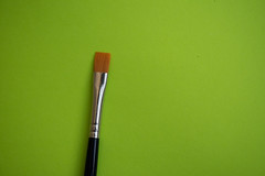 Paint brush (Rushay) Tags: backgrounds copyspace brush art paintbrush green portelizabeth southafrica