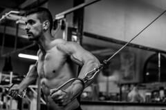 DSC_9033-7 (hixembg) Tags: fitness deporte gym bodybuilding culturismo training