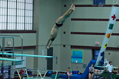 142A0862 (Roy8236) Tags: gmu american old dominion swim dive