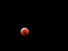 Super Wolf Blood Moon (bOw_phOto) Tags: superbloodwolfmoon seattle olympus omd em10ii 14150 moon eclipse