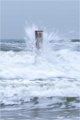 Splashed! (karindebruin (OFF FOR A WHILE)) Tags: nederland noordholland petten thenetherlands palen palendorp poles wood hout wave golf splash springtide