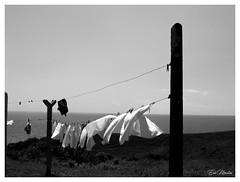 Aux bons soins d'Eole (litang13) Tags: soe bretagne mer sea nb blanckwhite noir blanc france