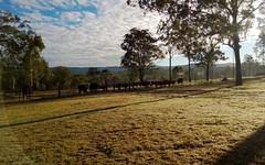 5 Cypress Drive, Lugarno NSW
