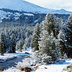 It's beginning to look a lot like Christmas, Yosemite NP 2015 thumbnail