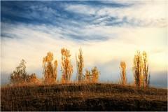 Der Herbst ist über´n Berg (linke64) Tags: thüringen deutschland germany himmel herbst natur landschaft wolken bäume berg