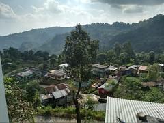 Way to Darjeeling (freelance.travels) Tags: darjeeling nature budget tour