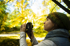 do you see (intheclearkid) Tags: fall camera shooting tree leaves yellow leica m10 m240 summicron 28mm