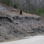 Slade Formation over Cowbell Member (Mississippian; Clack Mountain Road Outcrop, south of Morehead, Kentucky, USA) 1 thumbnail