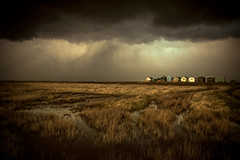 a gathering (stocks photography.) Tags: michaelmarsh whitstable photographer photography seaside coast beach beachhuts landscape cloudscape agathering atmospheric cinematic tenhuts seascape seasidephotography beachphotography seasalter
