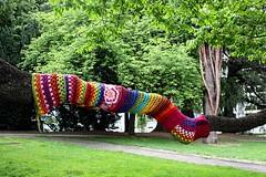 Tree Sweater # 3 (just.Luc) Tags: tree arbre boom baum árbol wool laine wol sweater trui parc park garden tuin jardin garten luik liège belgië belgien belgique belgium belgica