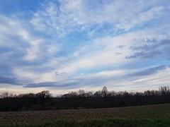 Ciel cagnottais et douceur très peu hivernale (Marie-Hélène Cingal) Tags: cagnotte landes 40 ciel sky clouds nuages