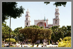 Merida,Plaza Grande (myvalleylil1) Tags: mexique architecture place arbre cathédrale