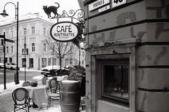 Vilnius, oldtown (no.sad.tomorrow) Tags: oldtown vilnius lithuania lietuva details architecture cafe cat filmphotography film filmforever filmnotdead analogphotography analog analogue 35mm blackandwhite negroyblanco yashika fx3 yashica super2000 fomopan fomopancreative iso200