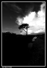 Après L'averse..... (faurejm29) Tags: faurejm29 canon ciel campagne sigma landscape nature nb nuages chemin paysage sky