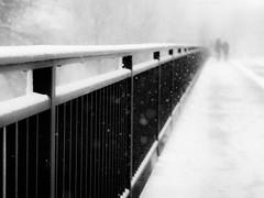 snowy day (Sandy...J) Tags: snow snowfall walking white winter monochrom blackwhite bw black germany urban noir olympus street streetphotography sw schwarzweis strasenfotografie stadt silhouette city mood stimmung photography fotografie deutschland absoluteblackandwhite
