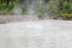 _TMY6823 (Бесплатный фотобанк) Tags: сша монтана парк йеллоустон грязевой вулкан usa yellowstone