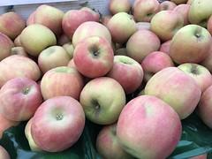 Pink Lady apples from Tenerelli Orchards (TomChatt) Tags: food farmersmarket