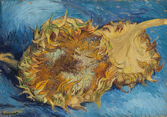 Sunflowers (1887) by Vincent Van Gogh. Original from the MET Museum. Digitally enhanced by rawpixel. (Free Public Domain Illustrations by rawpixel) Tags: 1887 otherkeywords antique art artwork blue detailed dutch famous fineart flower illustrated illustration metmuseum netherlands old painting postimpressionism publicdomain stilllife sunflowers vangogh vincent vincentvangogh vintage wallart yellow
