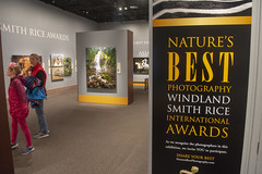 Have you seen this show yet? (Tim Brown's Pictures) Tags: washingtondc nationalmall smithsonian smithsonianmuseums nationalmuseumofnaturalhistory photography wildlifephotograpy photographycontest naturesbestphotography2018 washington dc unitedstates