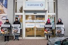 Leclerc Poznań1.d (Otwarte Klatki) Tags: aktywizm karpie streetwork