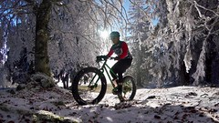 Looking For Every Inch Of White (29in.CH) Tags: fall autumn fatbike ride 18112018 sun trees