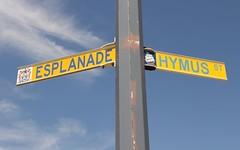 19 Edith Street, Hurstville NSW
